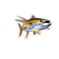 "Риба Тон ""Жълта Перка"""